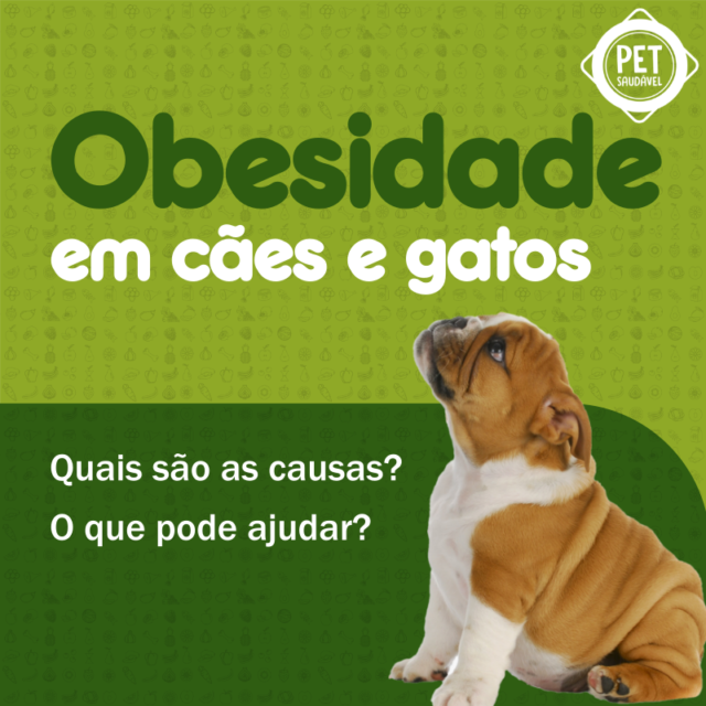 https://www.petsaudavel.vet.br/wp-content/uploads/2020/02/Obesidade-Post-Blog-2-640x640.png