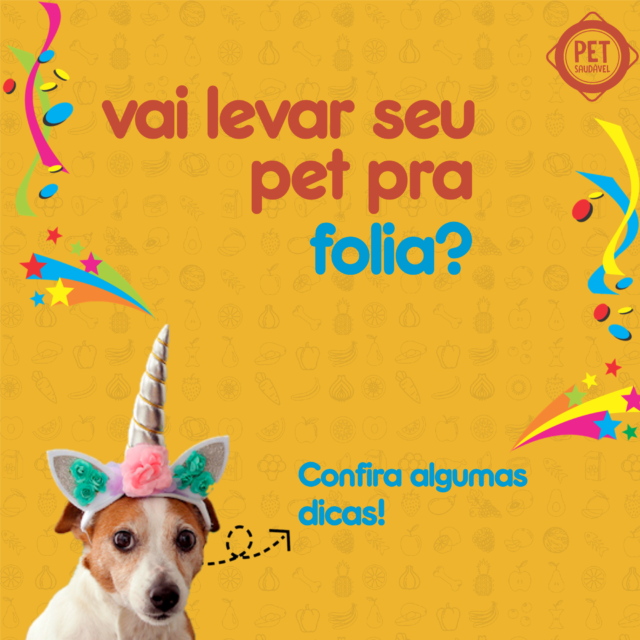 https://www.petsaudavel.vet.br/wp-content/uploads/2020/02/carnaval-dicas-640x640.png