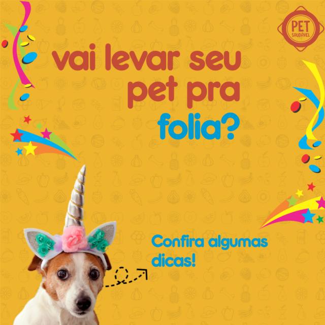https://www.petsaudavel.vet.br/wp-content/uploads/2020/02/carnaval-dicas-640x640.png