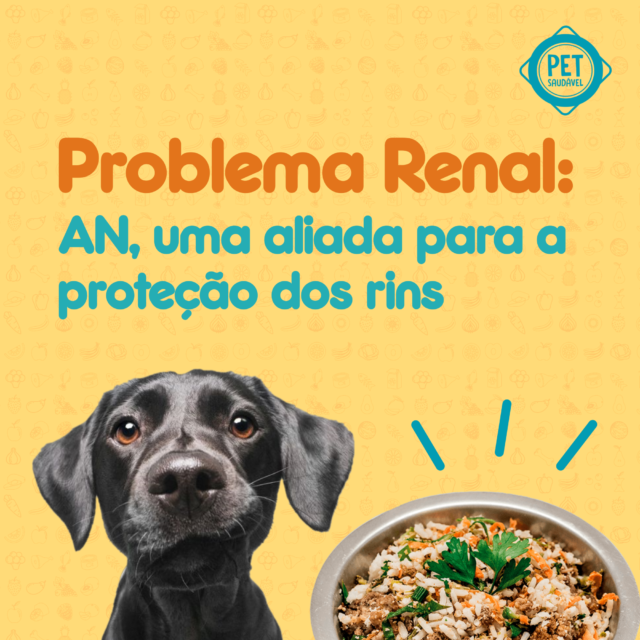 https://www.petsaudavel.vet.br/wp-content/uploads/2020/03/Problema-Renal-Final-blog-640x640.png